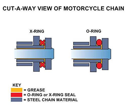 X-Ring vs O-Ring Chain