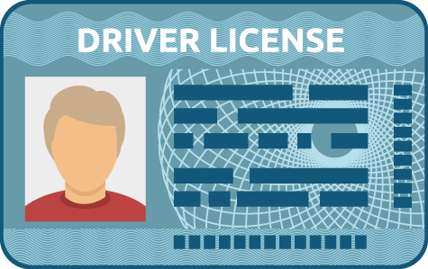 Illustration of a Driver License